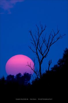 Sunset at Sundarban forest by Z.Faisal, via Flickr