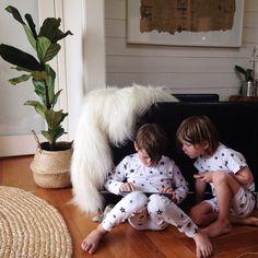 Long Haired Icelandic Sheepskins / thirteen red shoes $275