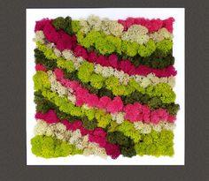 Moss Wall Art, Decoration Originale, New Life, Wall Decor, Pictures, Crafts, Home Decor, Vertical Gardens, Frames