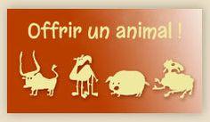 Offrir-un-animal à un éleveur pauvre, idée de cadeau écolo qui claque!