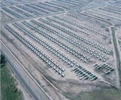 The Worlds Largest Bone Yard