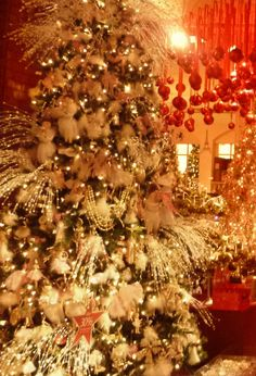 We can always count on Macy's for beautiful, fantastical trees!