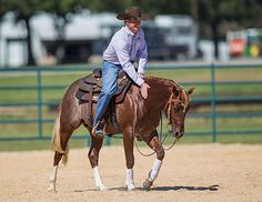 Downunder Horsemanship | Training Tip: Dealing With A Problem Horse? You Have To Change First