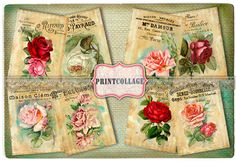 Roses - Digital Collage Sheet Printable Vintage Paper for Jewelry Holders,Journaling,Tags Printable Vintage, Printable Paper, Arts And Crafts Projects, Flower Images, Digital Collage, Collage Sheet, Vintage Paper, Page Design, Scrapbook Pages
