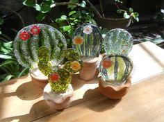 cactus vitrofusion - Google Search