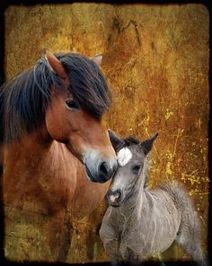 Motherly Love by Anna Andres. ❦