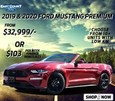 2019 & 2020 Mustangs are back in stock! Choose before we are sold out! #Toronto #Ontario #GTA #Deals #Sport #Convertible #Coupe #Power #Performance Mustangs, Driving Test, Gta, Ford Mustang, Lincoln, Ontario, Convertible, Toronto, Finance