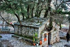 """Theodora Chapel is a chapel with 17 trees that come out of its roof. The chapel entered the Guinness Book of Records as a """"Miraculous Chapel"""". Macedonia Greece, Crete Greece, Altar, Greece Tours, Tree Id, Tree Story, Greek Flowers, Nature Tree, Flowering Trees"""
