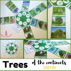 Trees of the contine