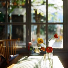 I used to take pictures when the summer light came into my cafe through the windows and as you can feel that was my favourite thing to do d. Dream Illustration, Morning Inspiration, Through The Window, My Sunshine, Breeze, Kitchen Dining, Pure Products, Table Decorations, Flowers