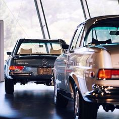 nice The continuity in lines between the 280 SE and the 280 SL Pagoda really send the. Mercedes Benz Classes, Mercedes Benz Coupe, Classic European Cars, Classic Cars, M Benz, Daimler Benz, Classic Mercedes, Maybach, Automotive Art