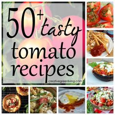 Now I know what to do with all my tomatoes! 50 recipes to choose from - including ways to use all the tomatoes I canned.