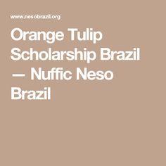 Orange Tulip Scholarship Brazil — Nuffic Neso Brazil