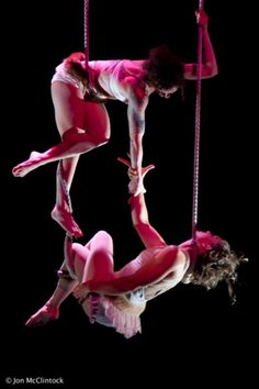 Erica and Carlin on static trapeze. Beautiful lines. Aerial Acrobatics, Aerial Dance, Aerial Hoop, Aerial Arts, Aerial Silks, Circus Performers, Pose Reference Photo, Circus Art, Contortion