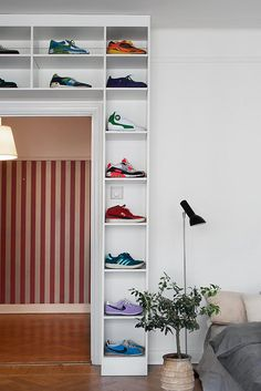 Creative shoe display and storage