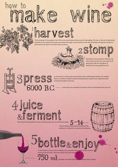 How to make #wine :) #infographics REpinned via https://www.facebook.com/DhomeBAZAAR