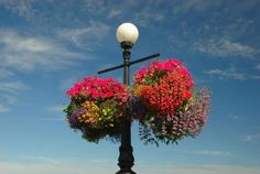 Massive hanging baskets, like this one in Victoria, B.C., made a lasting impression on Mark Cullen.