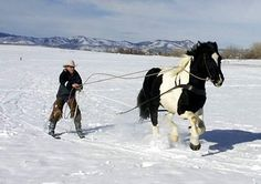 Skijoring With Horses -  Nate Bowers of Bowers Farm, Fort Collins, CO