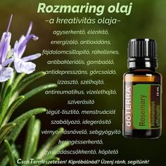 Doterra Oils, Essential Oils, Medical, Butterfly, Natural, Healthy, Therapy, Medicine, Health