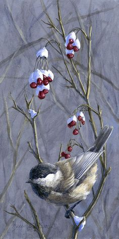 ARTFINDER: Winter Harvest 2 - Berries, Snow, and. by Karen Whitworth - Black Capped Chickadees can be found throughout the state of Alaska, and the world. Their seemingly cheerful antics bring warmth to even the coldest of winte. Winter Painting, Winter Art, Bird Paintings On Canvas, Watercolor Paintings, Painting Art, Bird Pictures, Winter Pictures, Bird Drawings, Cute Birds