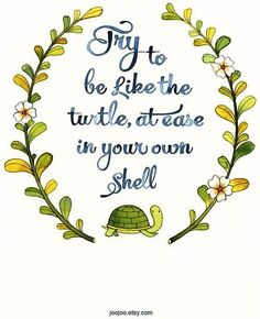Turtle quote via Living Life at www.Facebook.com/KimmberlyFox.39