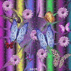 glitter butterflies images | ,gif butterflies,butterflies images,butterflies glitter,blog,images ...