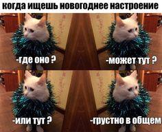 YHsiO13ihNA.jpg (960×782)