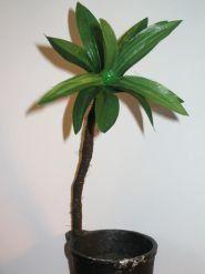Palm tutorial