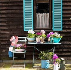 Love the aqua shutters! maybe on the window on the back porch...