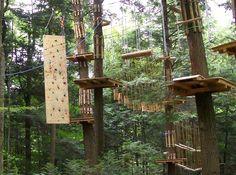 Ramblewild | Tree-to-Tree Adventure in Lanesborough, MA This looks like soooo much fun!!!!