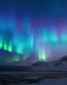 Magical night in lofoten northernlights polarlights spikes internally threaded belly bar with prong set aurora borealis crystals silver red rainbow Lofoten, Aurora Borealis, Sky Gif, Northern Lights Norway, Northen Lights, Space And Astronomy, Sky Aesthetic, Beautiful Sky, Nature Pictures