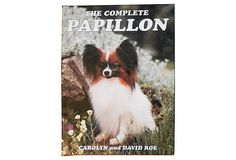 The Complete Papillon on OneKingsLane.com Corgi, Cats, Animals, Black, Gatos, Animales, Animaux, Black People, Corgis