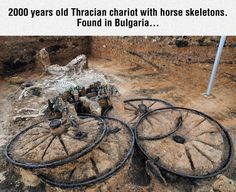 What a discovery!  I can't imagine how excited the persons were who found it.  It is a bit sad to see the horses died while in harness to the chariot.  I wonder if it was in connection to the burial of an emperor or something....