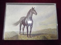 Sold!!  #CapeShore #Vintage Race #Horse Note Cards C.W. #Anderson Prints Leftover Pack.