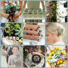 I like the idea of using plants and even cactus for decor and for guests to take as favors.