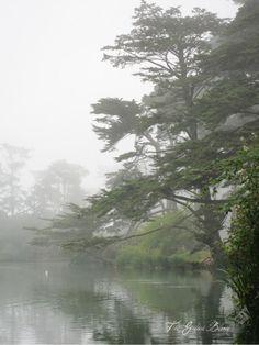 Stow Lake, Golden Gate Park, San Francisco