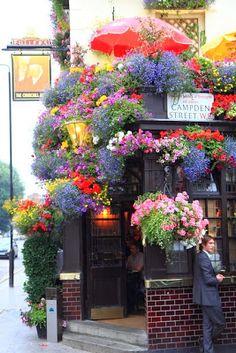 Ultimissime dall'orto: a Londra il pub più fiorito del mondo