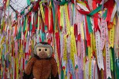 Apen matkat: Soul, osa 3, retki Pohjois-Korean rajalle http://apenmatkat.blogspot.fi/