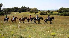 Excursiones a caballo por Menorca Menorca, Adventure, Islands