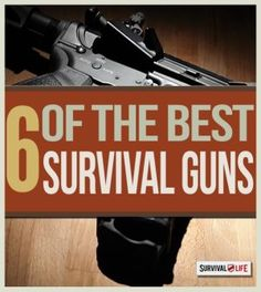 Choosing the Best Guns and Ammo for your Arsenal | The Best Survival Gear For Hunting & Self Defense By Survival Life http://survivallife.com/2014/10/13/best-guns-and-ammo/