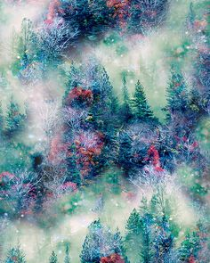 Call of the Wild - Misty Pines - DIGITAL PRINT- Quilt Fabrics from www.eQuilter.com