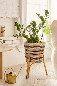Bistro Rattan Planter + Stand Slide View: Bistro Rattan Planter + Stand This image has get Rattan Planters, Rattan Basket, Wicker, Plant Basket, Baskets, Japanese Home Decor, European Home Decor, Circle Wall Shelf, Urban Outfitters Home