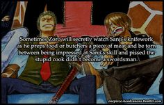 zoro and sanji -OP (I love their crazy ass relationship!)