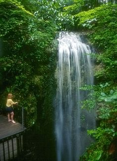 Falling Waters State Park in the Florida Panhandle three miles south of Chipley features a Natural 67' waterfall! Tip: For a full day trip, you can combine a visit to Falling Waters with a tour of Florida Caverns State Park in Marianna, which is about a half hour away.
