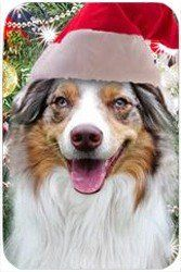 "Australian Shepherd Red Merle Tempered Cutting Board Christmas by Doggie of the Day. $29.99. Dishwasher Safe. 11.8"" x 7.87"" x 5/32"". Please allow 4 days to ship. Durable. Spice up your kitchen with a fabulous cutting board! These cutting boards are perfect for home chef's and restaurant owner's alike. This is a specially coated glass cutting board that is durable and dishwasher-safe."