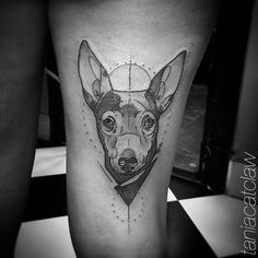 Sketch work chihuahua tattoo on the right thigh.