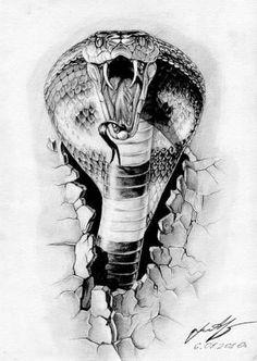 Tattoos тату на плече мужские эскизы: 55 тыс изображе tatuagem no ombro desenhos masculinos: 55 mil imagens . Snake Sketch, Snake Drawing, Snake Art, Tattoo Drawings, Body Art Tattoos, Sleeve Tattoos, Sketch Tattoo, Kobra Tattoo, Petit Tattoo