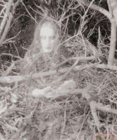 27 Scary Pics and Paranormal Photos - Creepy Gallery Ghost Images, Ghost Photos, Real Ghost Pictures, Ghost Caught On Camera, Spirit Ghost, Ghost Sightings, Spooky Places, Haunted Places, Ghost Hauntings