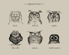 Caffeinated Owls by Society6