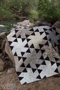 Jaybird Quilts  LOVE that black & white!!!